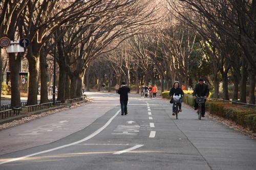 駒沢公園トレーニング47キロ年末
