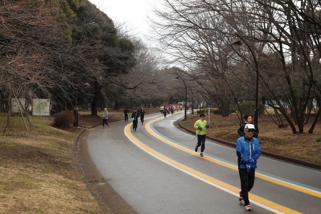 駒沢公園42キロ梅がちらほら