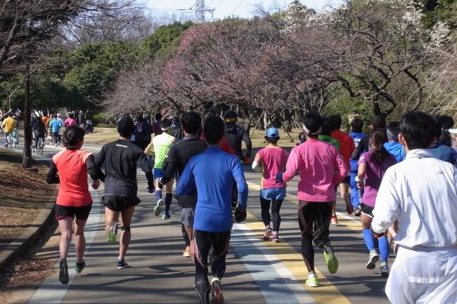 駒沢公園~多摩サイ~羽村阿蘇神社102キロパンク2回