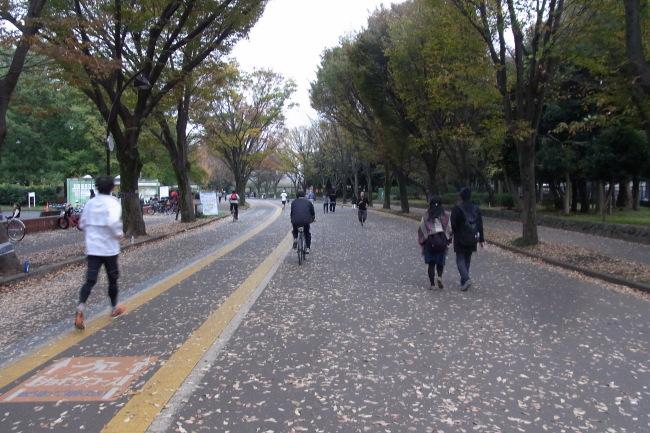 駒沢公園58キロ明日は雨とか
