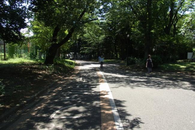 駒沢公園を朝晩走った53キロ日焼けした