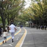 今週はひさびさ200キロ。今日は帳尻合わせの駒沢公園60キロ