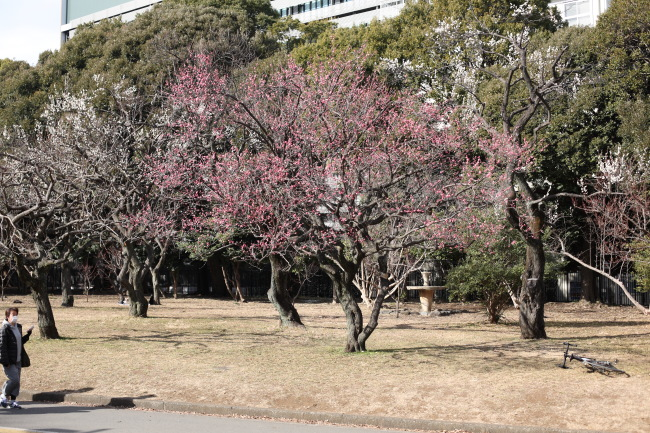 駒澤大学前